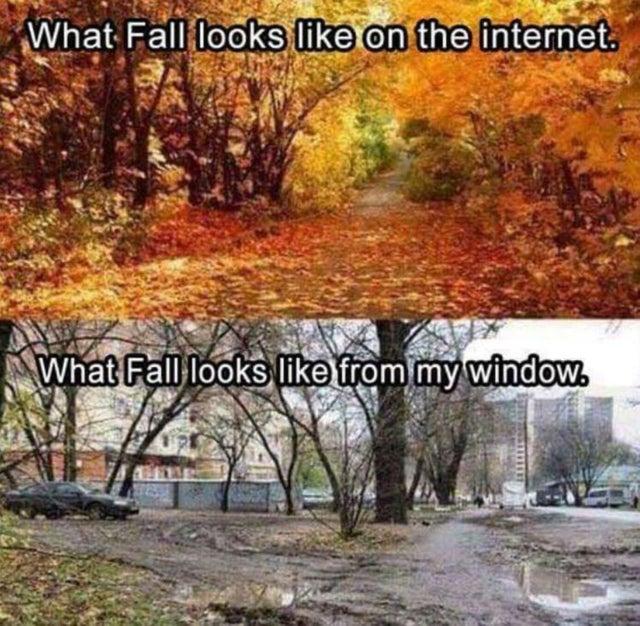 Never seen fall look like that where I live