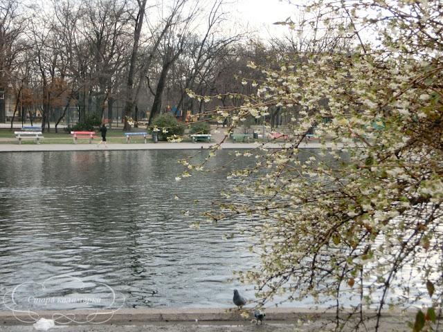 венгрия, хюгге, рустик, блоги о жизни за границей, ваби саби, о жизни в венгрии, русские в венгрии, сад весной