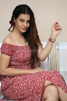 Diksha Panth in a Deep neck Short dress at Maya Mall pre release function ~ Celebrities Exclusive Galleries 050.JPG