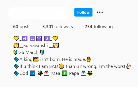 Instagram Bio for Boys 2021