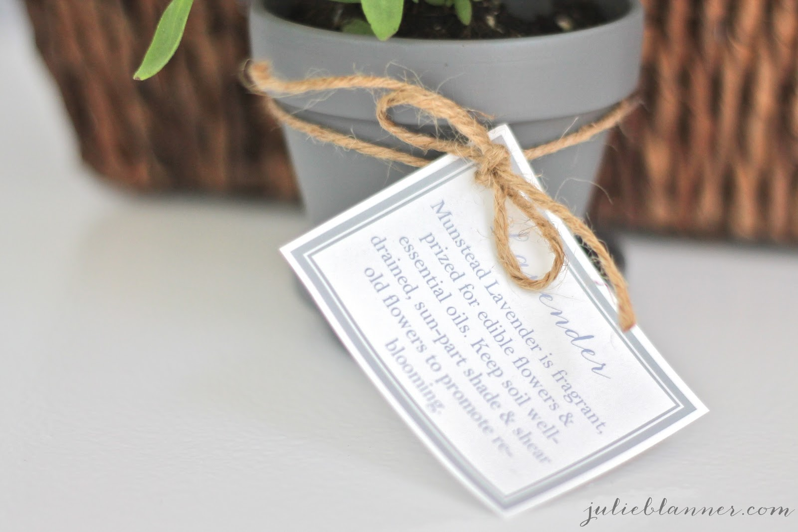 Homemade Housewarming Gift Ideas Homemade Housewarming Gift Julie Blanner