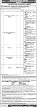 Latest Hayatabad Medical Complex Peshawar Jobs