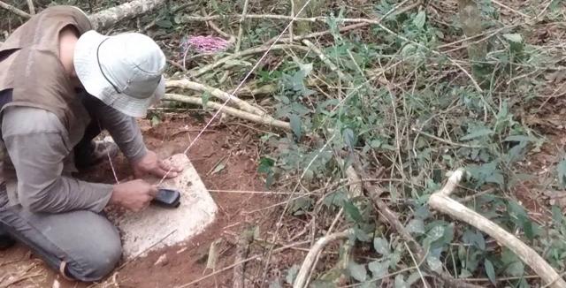 Bahia desmatamento