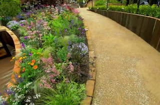 Plants along the sloped path