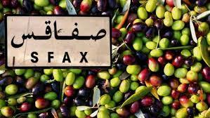 صفاقس: إرتفاع أسعار الزيتون في سوق ڨرمدة