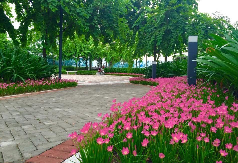 Sắc xanh tại khu đô thị Gamuda Gardens trong quần thể Gamuda City.