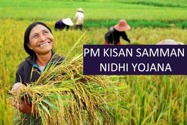 PM farmer status | Check Kisan Samman Nidhi scheme भुगतान | आवेदन स्थिति की ऑनलाइन जाँच करें