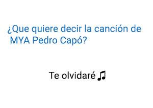 Significado de la canción Te Olvidaré MYA Pedro Capó.