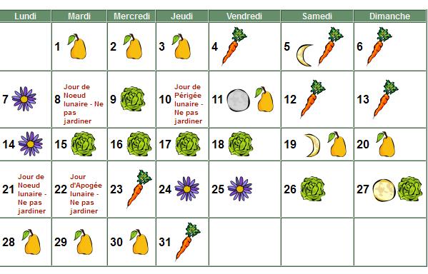 Au tour du jardin janvier 2013au tour du jardin potager - Graines et jardin calendrier lunaire ...