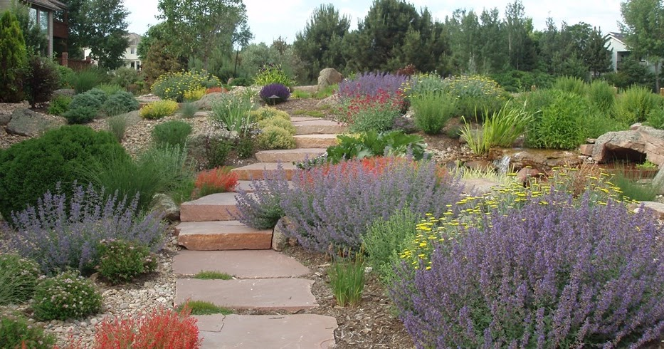 Gardening For Arid Landscapes - The Beauty of Xeriscaping on Xeriscape Backyard Designs id=75523
