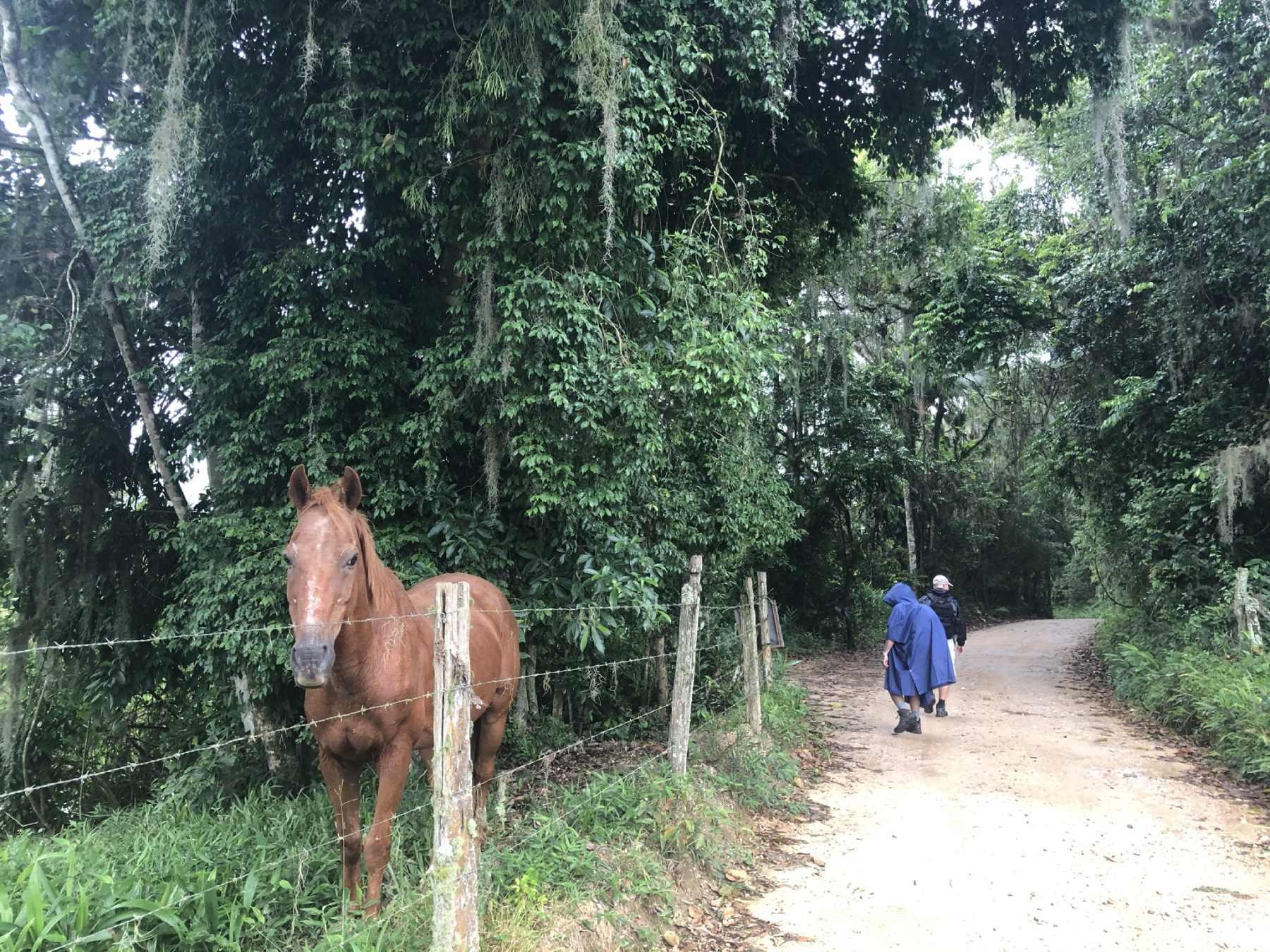 Pelo Caminho -Santa Catarina