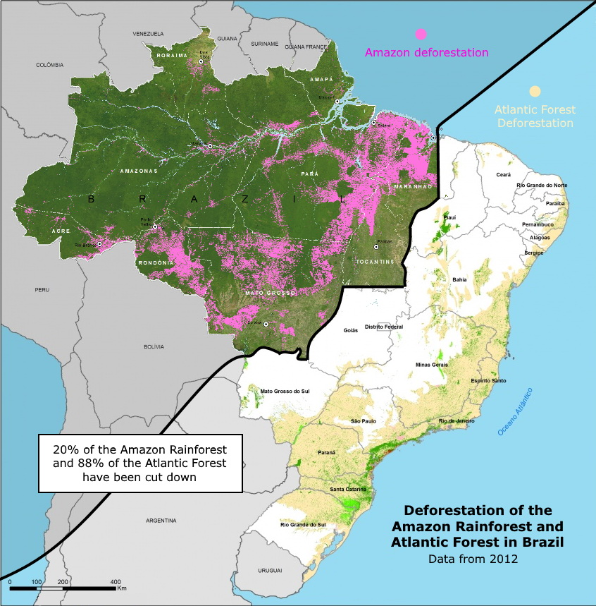 Deforestation of the Amazon rainforest and Atlantic forest in Brazil