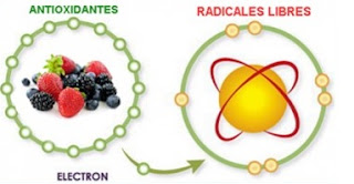 alimentos con antioxidantes