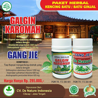 Pengobatan batu ginjal dengan obat herbal alami