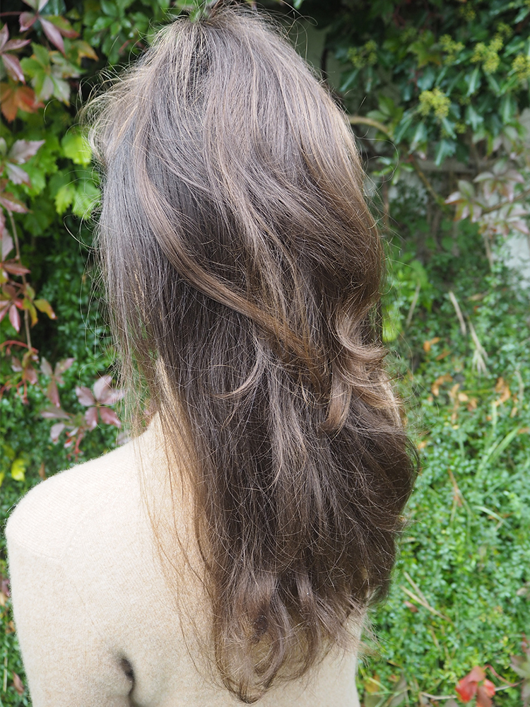 Half-Ponytail Water Only Hair