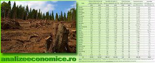 Topul statelor UE după tăierile de suprafețe împădurite pe parcursul unei ore