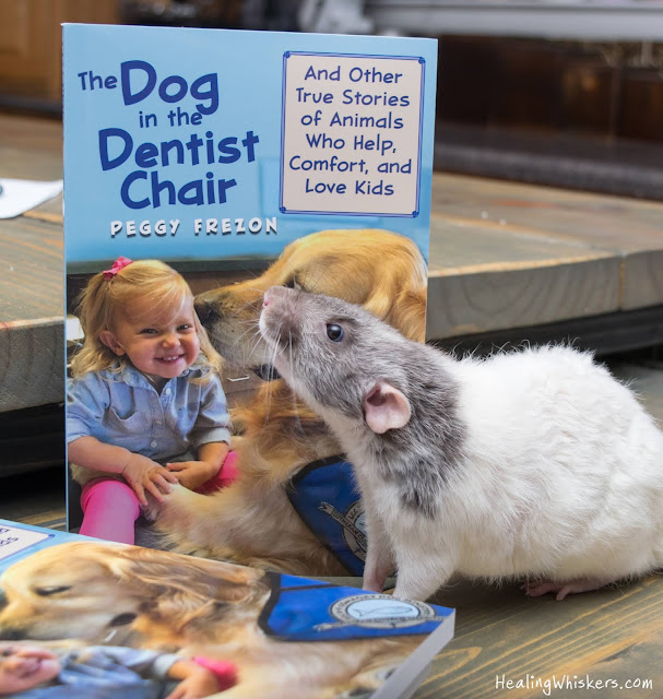 The Dog in the Dentist Chair by Peggy Frezon