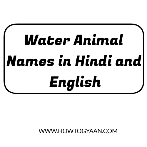 sea animals name, water animals name list, five water animals name, water animals name in English, 10 water animals name, land and water animals name