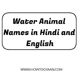 Water Animal Names in Hindi and English - पानी वाले जानवरों के नाम हिन्दी और इंग्लिश में