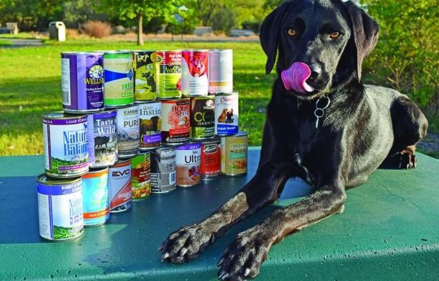 Healthy Dog Food Selection