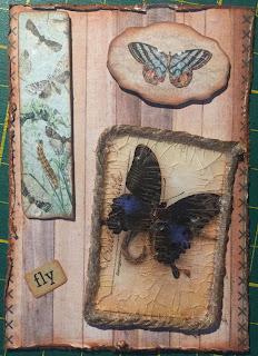 Vlinder ATC / Butterfly ATC