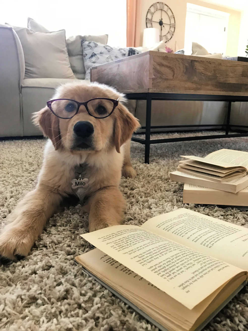 reading a book for teens