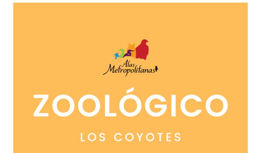 Zoológico los Coyotes 06 de octubre