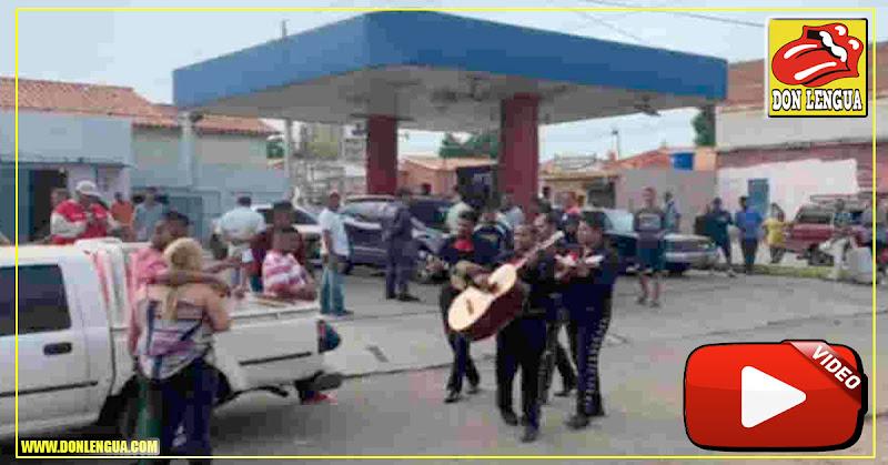 Romántico : Le lleva serenata con mariachis mientras hace la cola para la gasolina