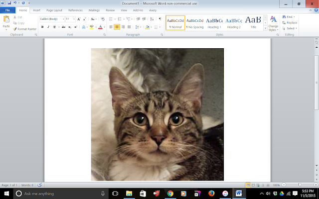 Image of Kitty copied to Word Document