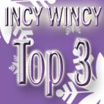 Winter Top 3