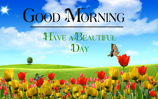 Good Morning Royal Images Download for Whatsapp Facebook7