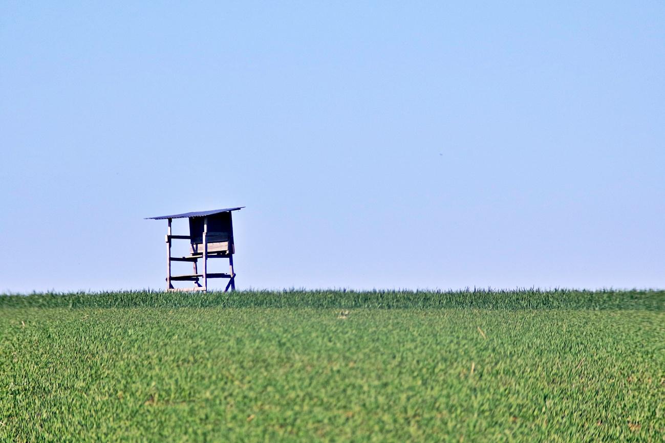 Zum Tagesabschluss — Tiny house, Minimalismus pur