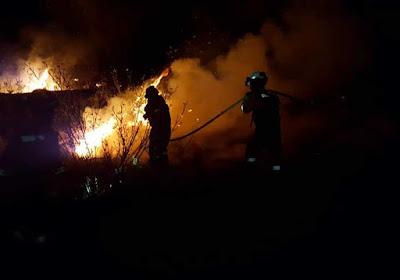 Se estima que las hectáreas calcinadas por el incendio de Gran Canaria ya superan las diez mil