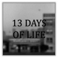 13 DAYS OF LIFE APK premium