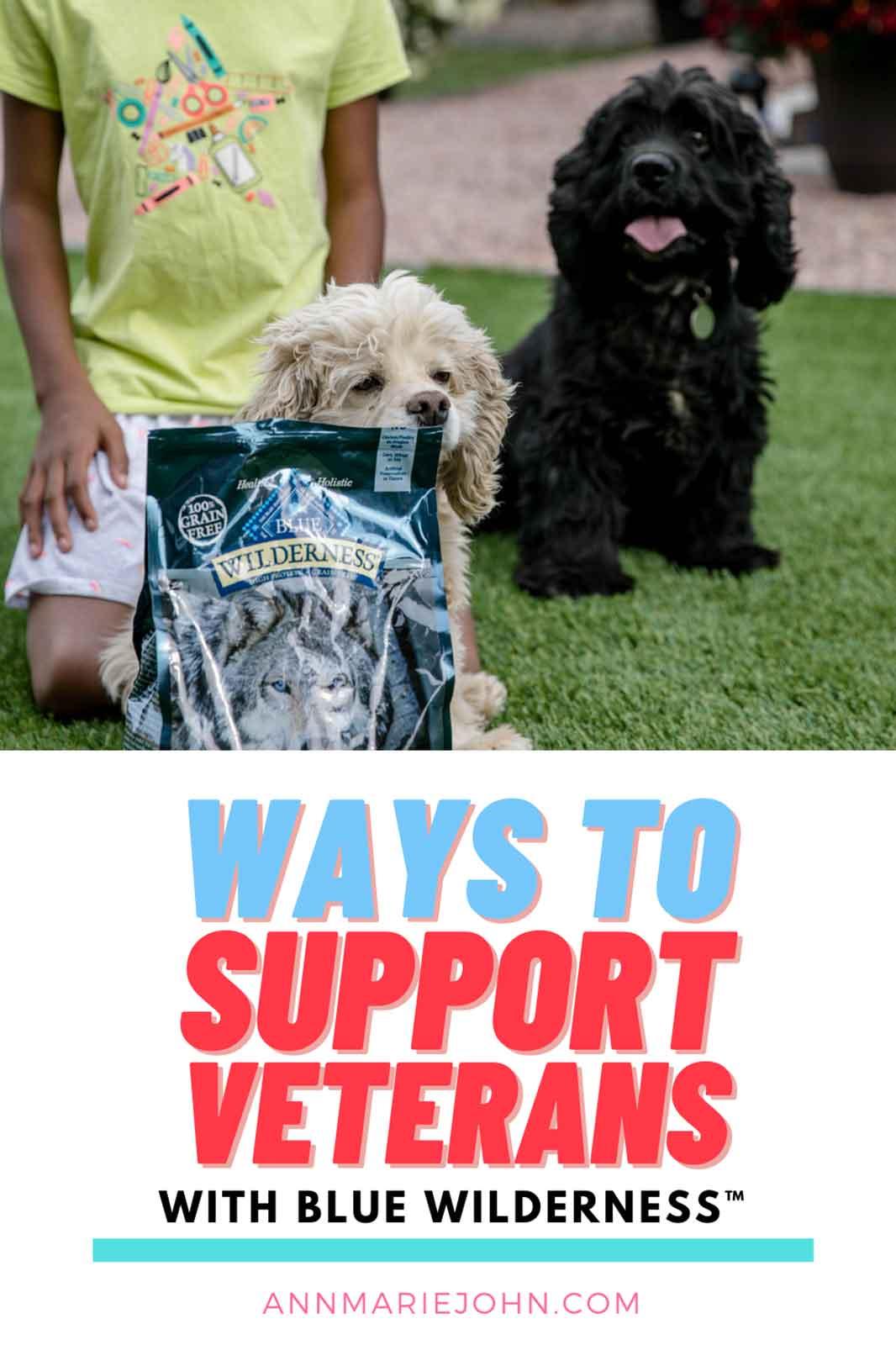 Ways To Support Veterans