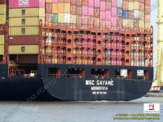 MSC Gayanè