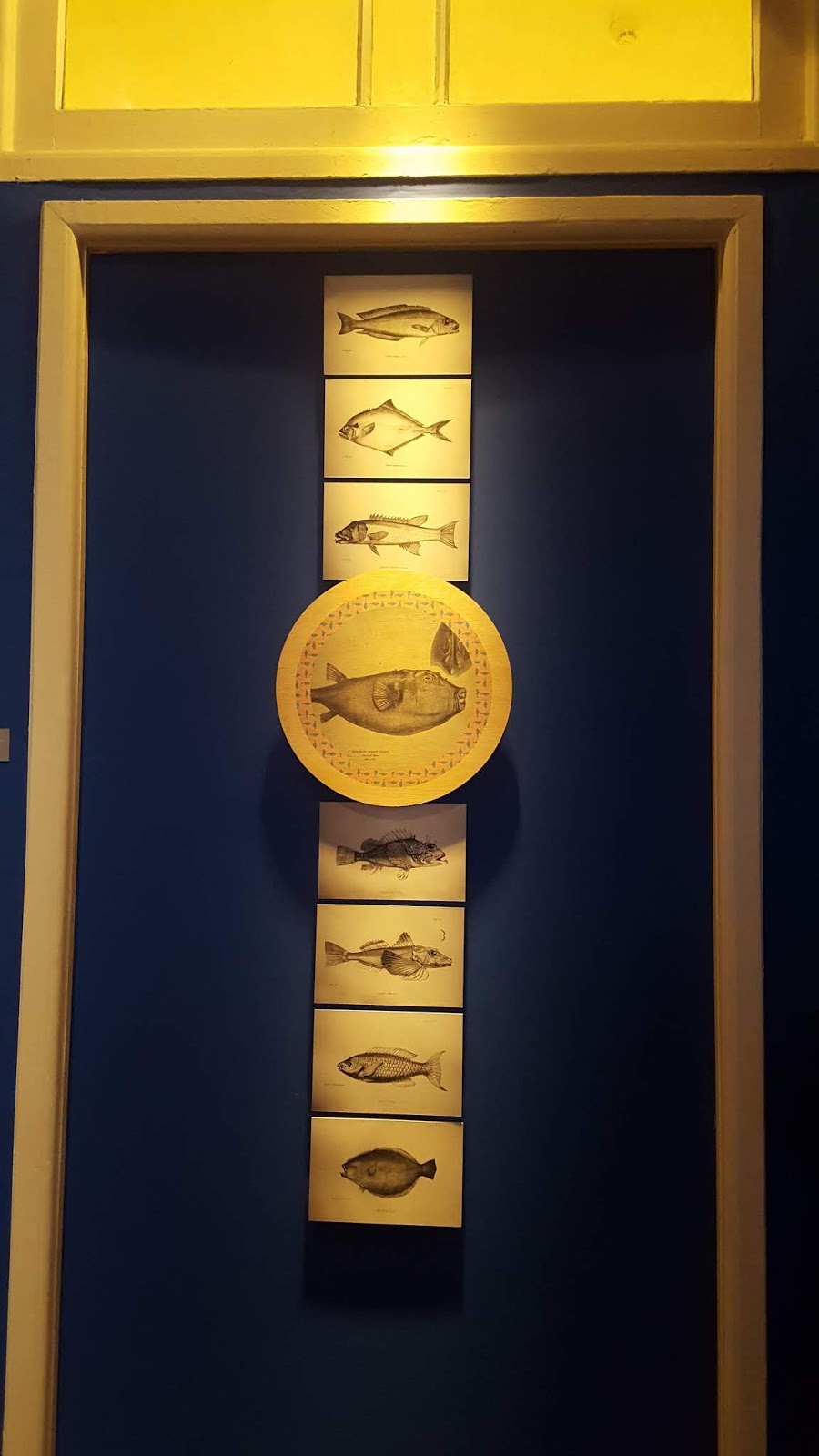 Museu do Meio Ambiente