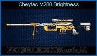 Cheytac M200 Brightness