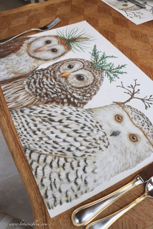 Owl paper placemats have whimsical unique greenery headdresses