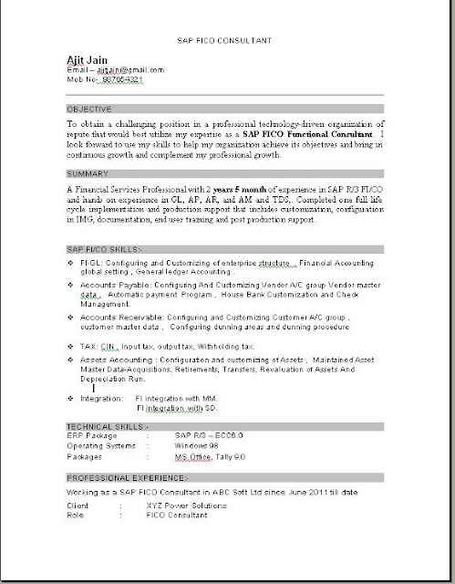 sap fico consultant resume download