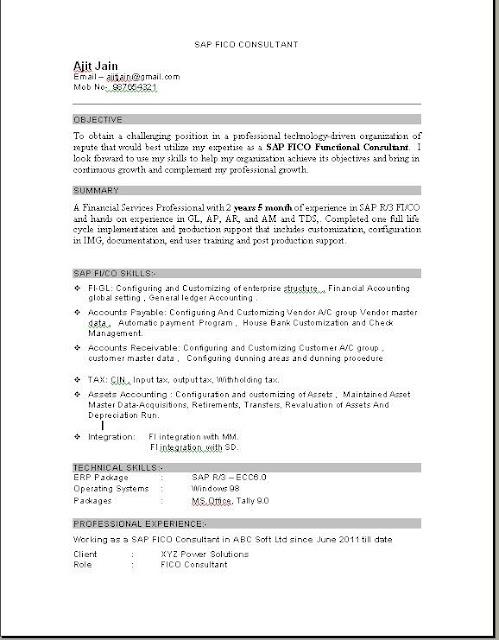 hr consultant resumes