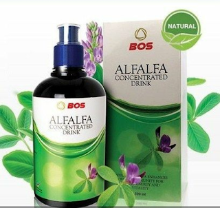 Herbal bee alfalfa