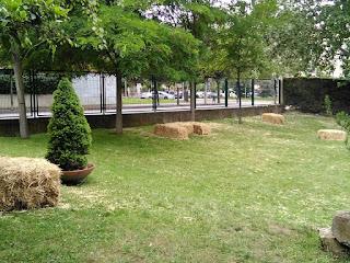 El patio que queremos para el cole que vivimos