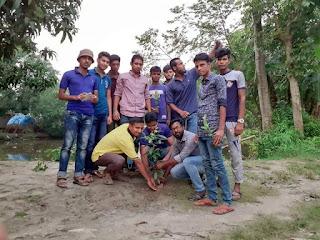 শৈলকুপা উপজেলা ছাত্রদলের উদ্যোগে জিয়াউর রহমানের ৩৯তম শাহাদাৎ বার্ষিকি উপলক্ষে বৃক্ষ রোপন