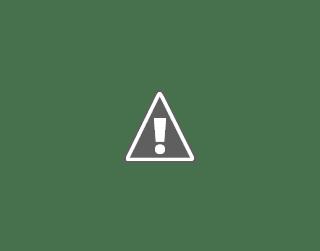 Bolt Tanzania, Business Development Manager