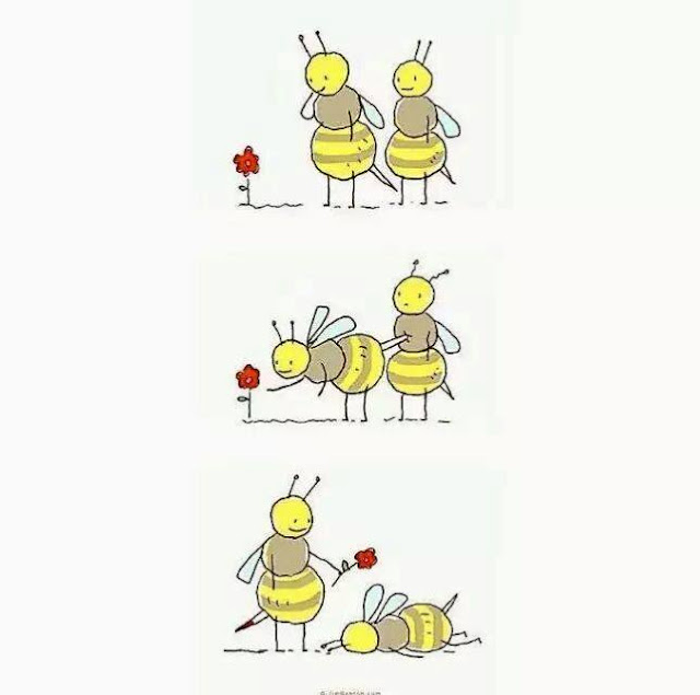 Funny bee sting love fail picture