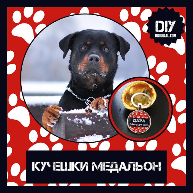 как да си направим кучешки медальон
