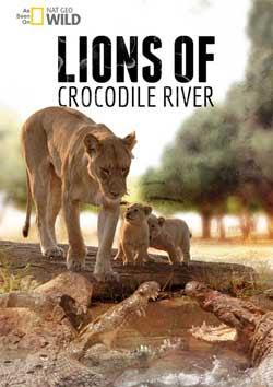 Lions of Crocodile River (2007)