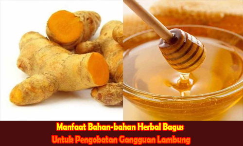 Manfaat Bahan-bahan Herbal Bagus Untuk Pengobatan Gangguan Lambung