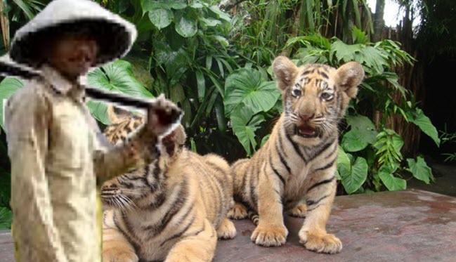 Petani dan ANak Harimau